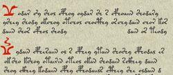 El Manuscrito de Voynich
